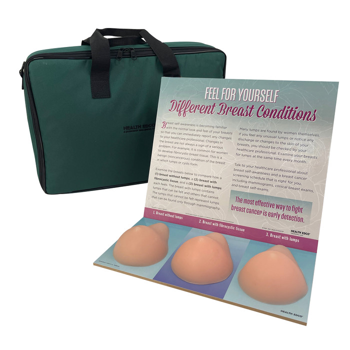 Multi Type BSE Model, Beige, three beige breast health education models, English Spanish display information and case, 26426