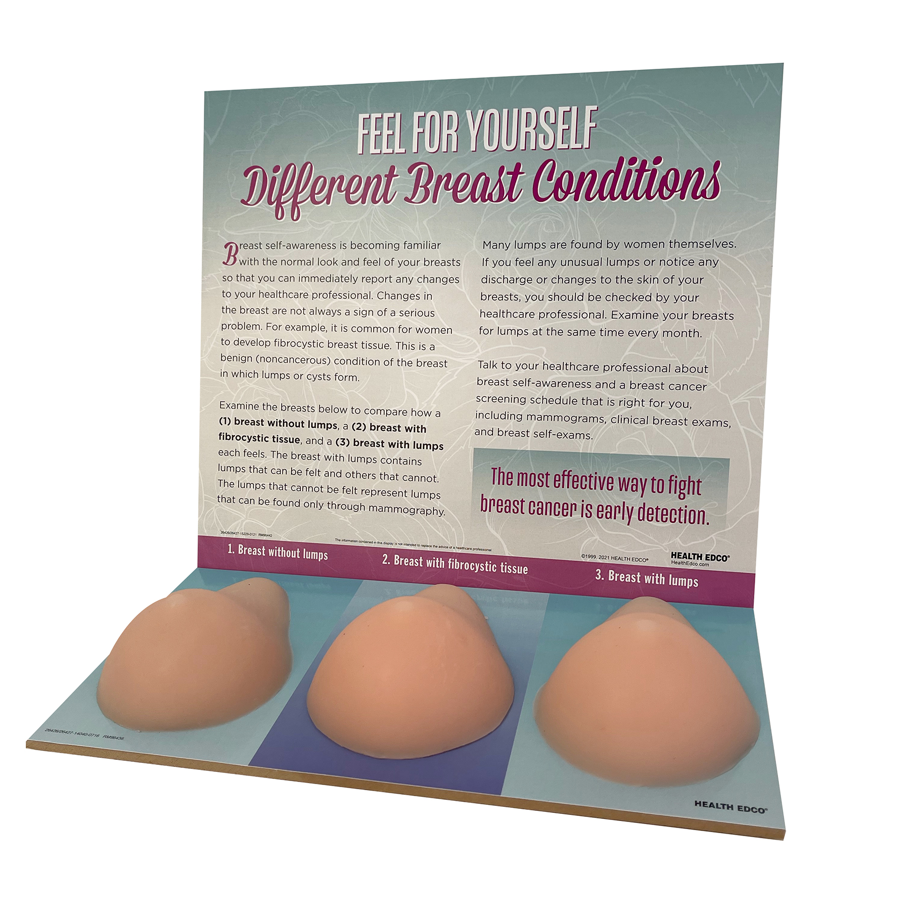 Multi-type BSE model, breast self-exam, breast conditions palpable lumps, Spanish language side, Health Edco, 26426, beige version