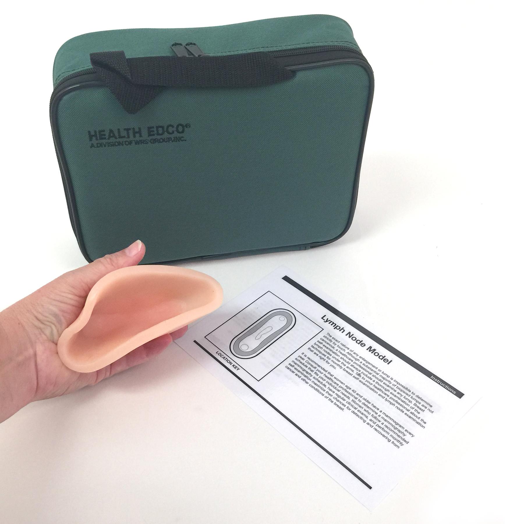 Lymph Node Model, beige lymph node model green carrying case instructions, Health Edco, 26575