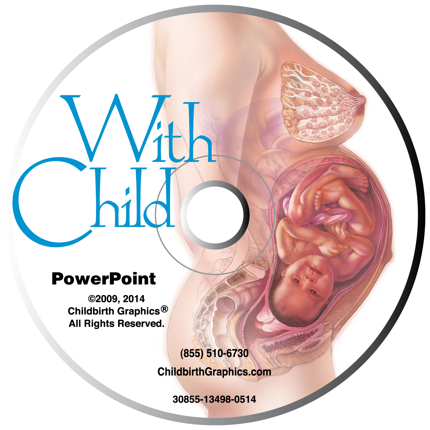 With Child PowerPoint, comprehensive 116 frame pre-pregnancy to 6 months postpartum presentation on disk with 46 page resource guide, With Child disk image, Childbirth Graphics, 30855