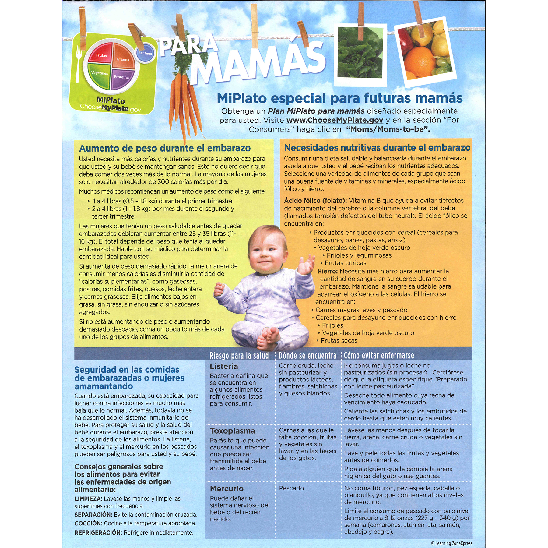 MyPlate for Expectant Moms Tear Pad Spanish, nutrition guideline future moms back, Childbirth Graphics, 39987