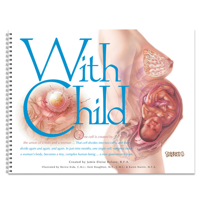 With Child Desk Version spiral bound 78 pages page 55 three female torsos fetal presentation, Childbirth Graphics, 43317