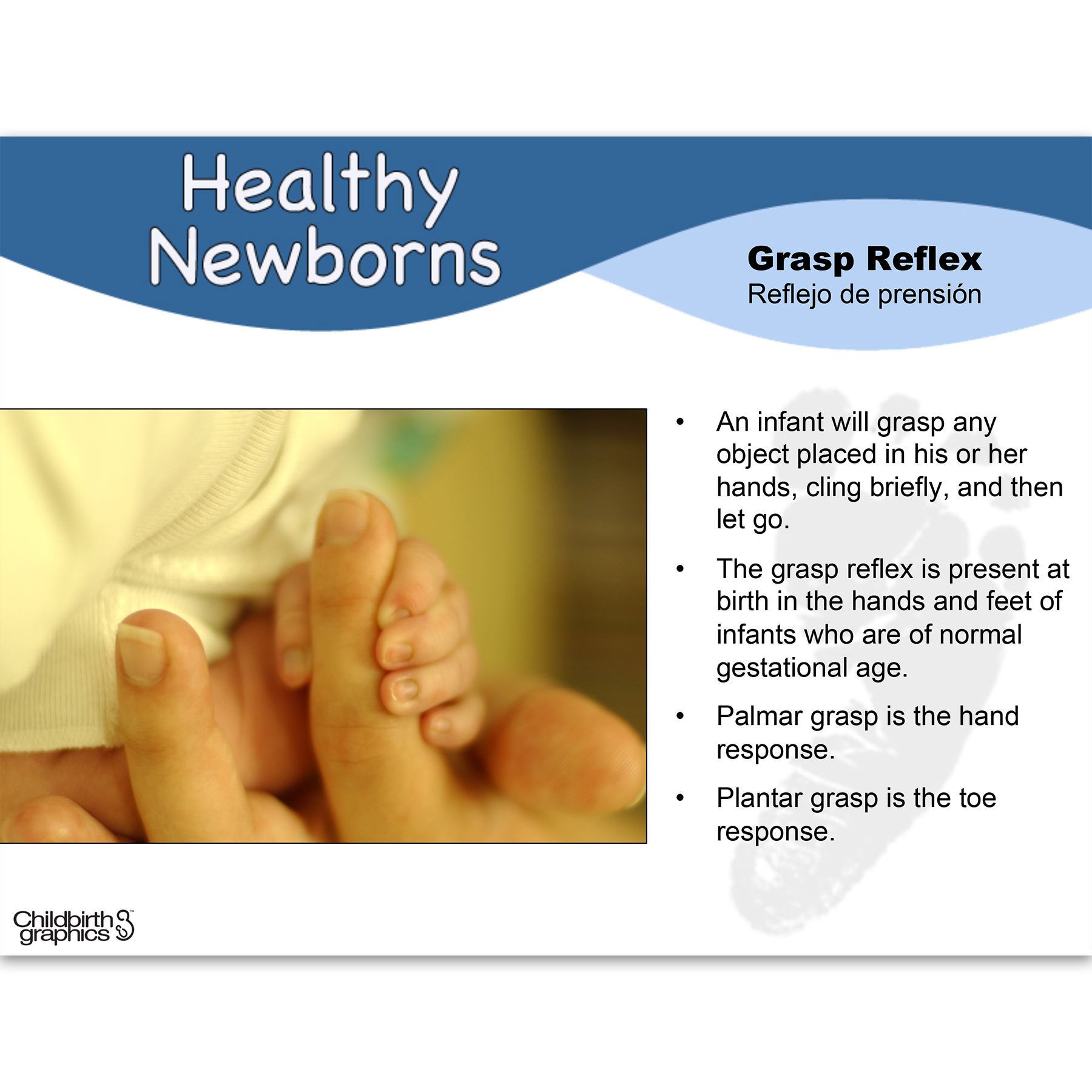 Healthy Newborns PowerPoint frame showing photo of grasp reflex and explanation, Childbirth Graphics 48514