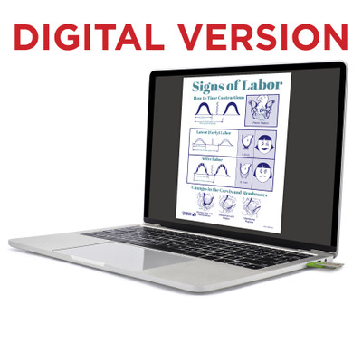 Signs of Labor Virtual Educational Resource, Childbirth Graphics labor and birth teaching tool shown on laptop screen, 52567V