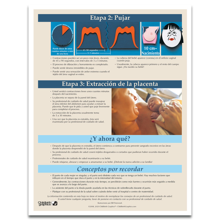 Stages of Labor Tear Pad in Spanish for childbirth education from Childbirth Graphics, childbirth teaching materials, 52604