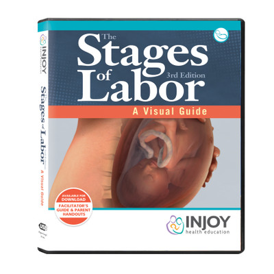 The Stages of Labor 3rd Edition: A Visual Guide USB, childbirth education materials and videos, Childbirth Graphics, 71420