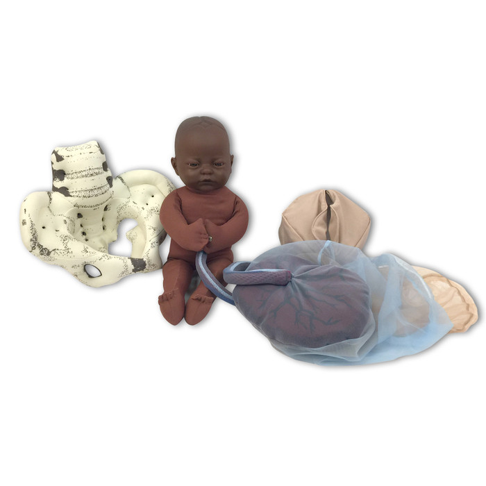 Cloth Pelvic Model Set for Childbirth Education with Fetal Model in dark brown skin tone, Childbirth Graphics, 78019
