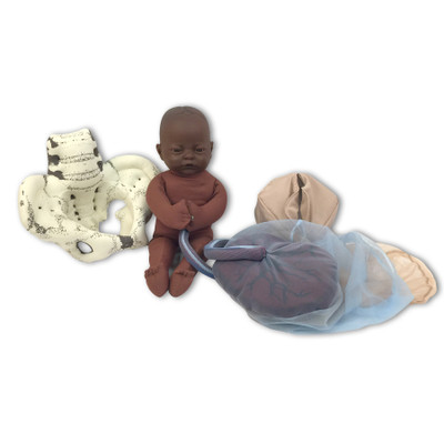 Cloth Pelvic Model Set for Childbirth Education with Fetal Model in dark brown skin tone, Childbirth Graphics, 78019