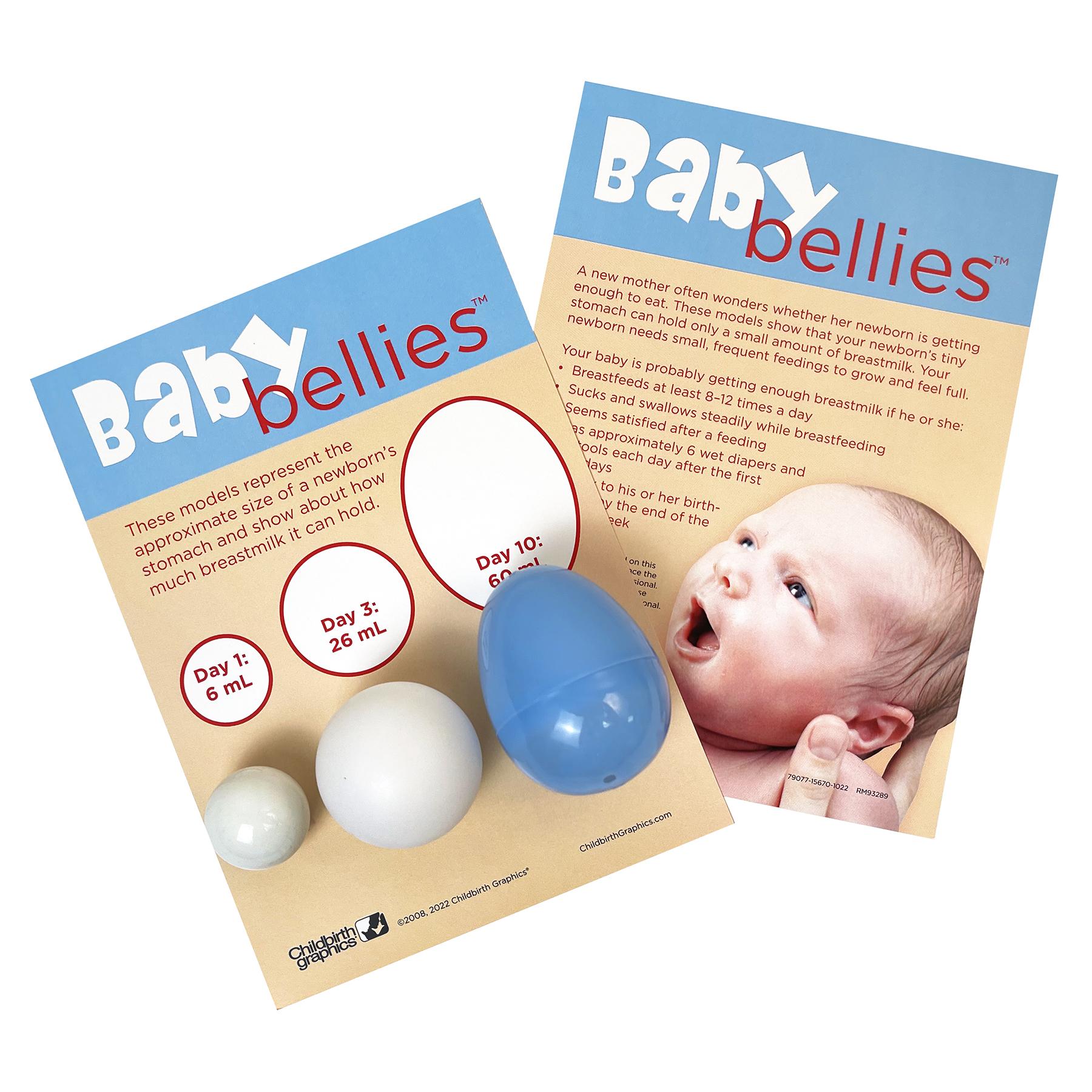 Baby Bellies Newborn Stomach Size Breastfeeding Education Display, childbirth education materials, Childbirth Graphics, 79077