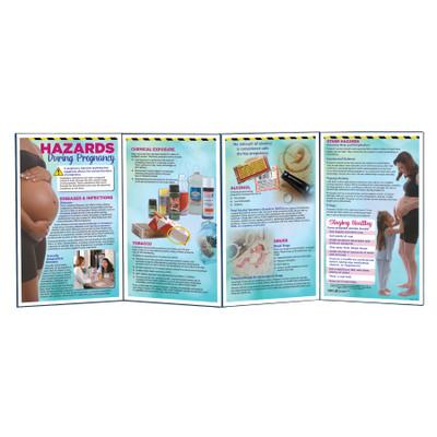 Hazards During Pregnancy Folding Display, prenatal education folding display, Childbirth Graphics teaching materials, 79349
