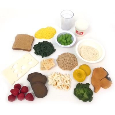 Nutrition During Pregnancy Food Set, fake food models types & portions for pregnancy, Childbirth Grapics, 79588