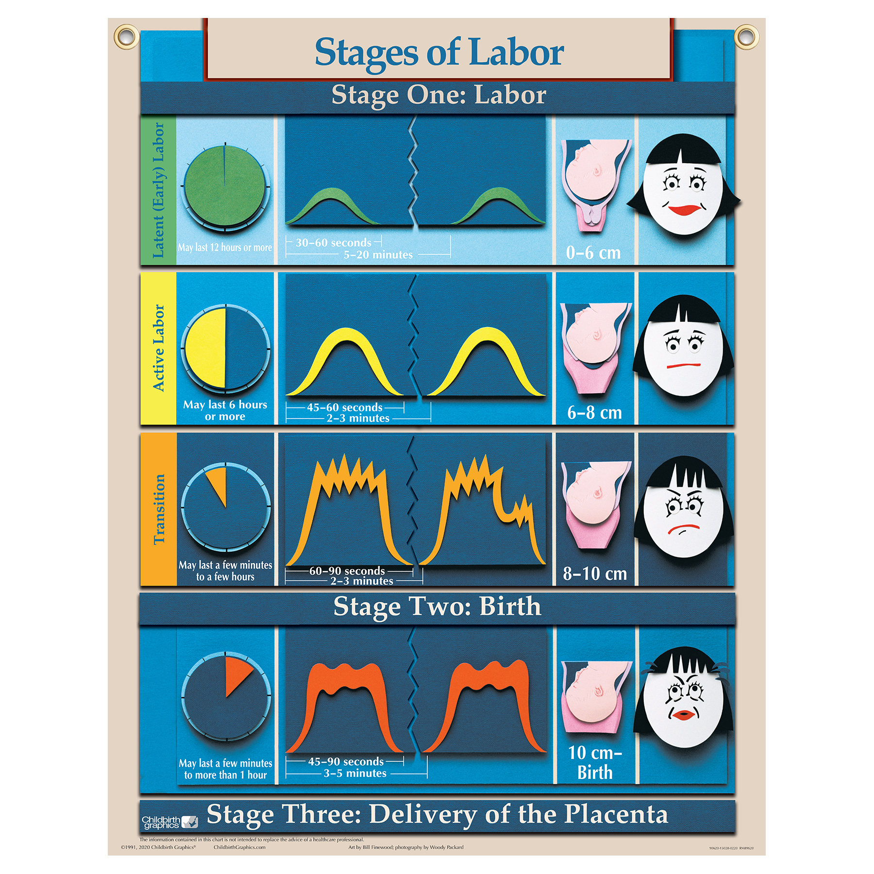 stages of labour The second stage of labour is from when your cervix is fully dilated to the time your baby is born the contractions during this time are regular and spaced apart as each contraction builds to a peak, you may feel the urge to bear down and push the sensation of the baby moving.