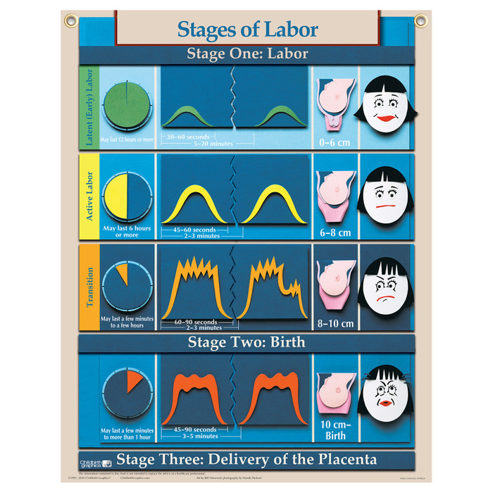Stages of Labor Chart in Six Essential Labor & Birth Charts, Virtual, digital Childbirth Graphics educational charts, 90630V