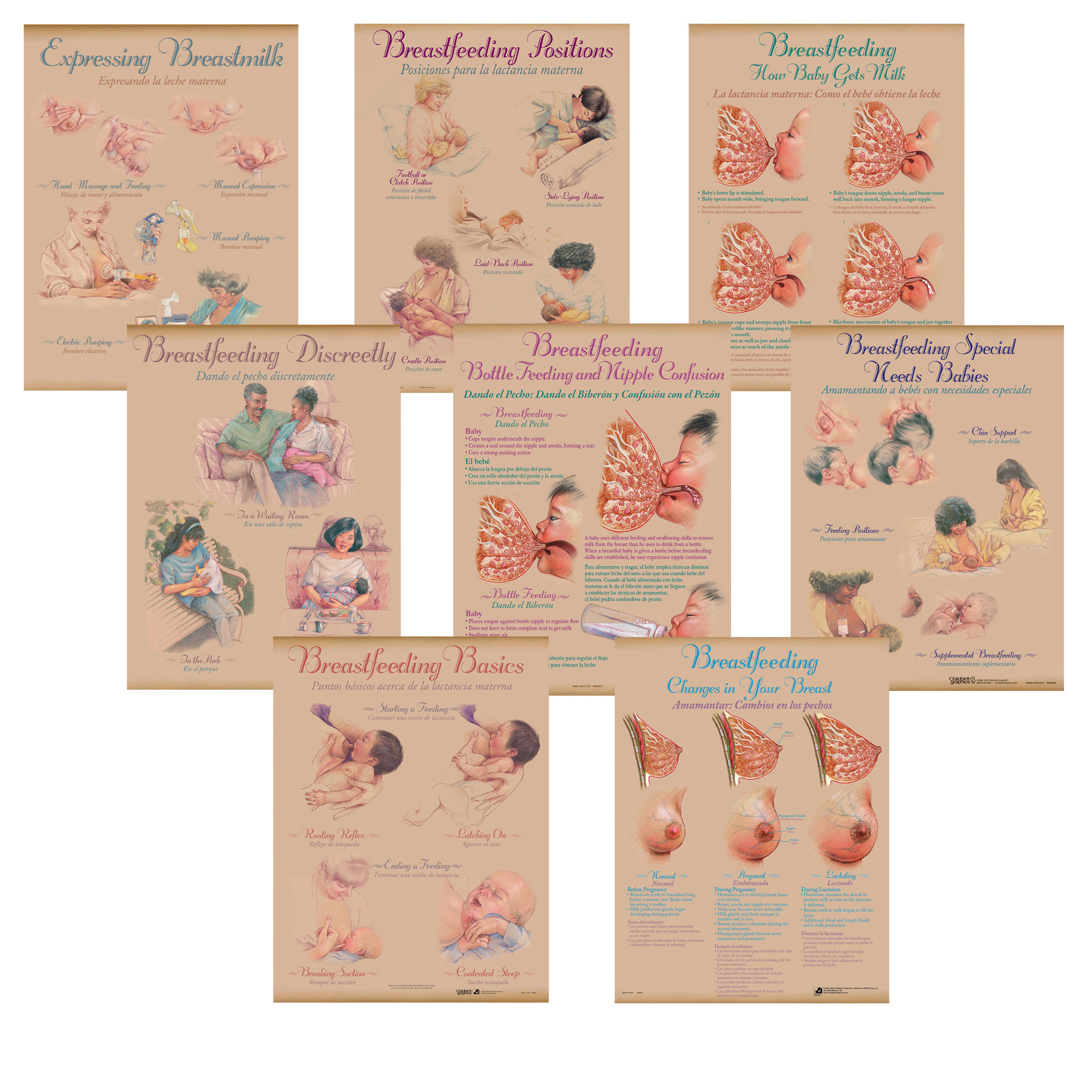 Breastfeeding Chart Set (8), illustrated set showing breastfeeding topics positions, Childbirth Graphics, 90809