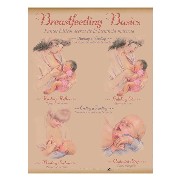 Breastfeeding Chart Set (8), illustrated breastfeeding starting & ending feeding, Childbirth Graphics, 90809