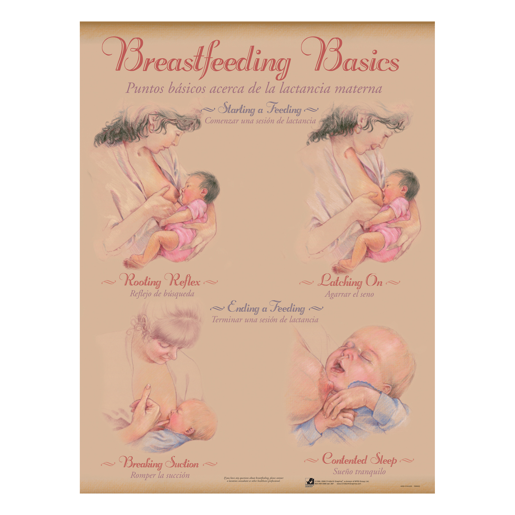 Breastfeeding Chart Set (8), illustrated breastfeeding starting & ending feeding, Childbirth Graphics, 90809